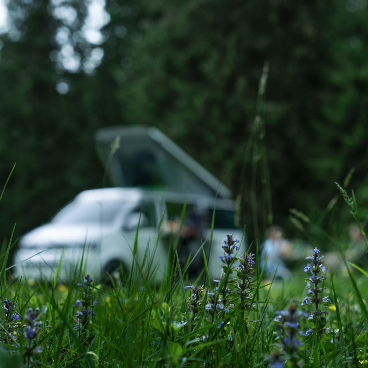 Camper mieten Schweiz, VW Bus in saftiger Blumenwiese, Jura, Kontakt
